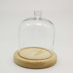 Glass Domes-FH23026ZB3