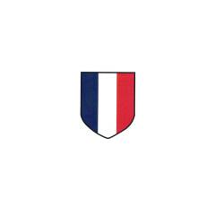 WWII German French Volunteer's II helmet decal
