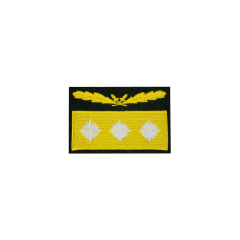 WWII German Heer Generaloberst Camo Sleeve Rank