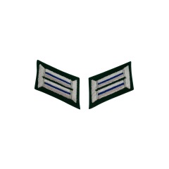 WWII German Heer Medical Officer Collar Tabs