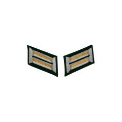 WWII German Heer cavalry / recon Officer Collar Tabs