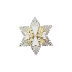 WWII German Eagle order 2nd Class breast star with swords