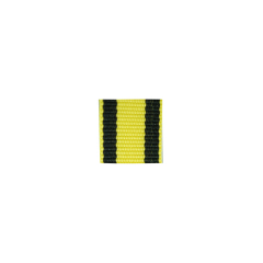 WWII German Austria Military service ribbon bar's ribbon