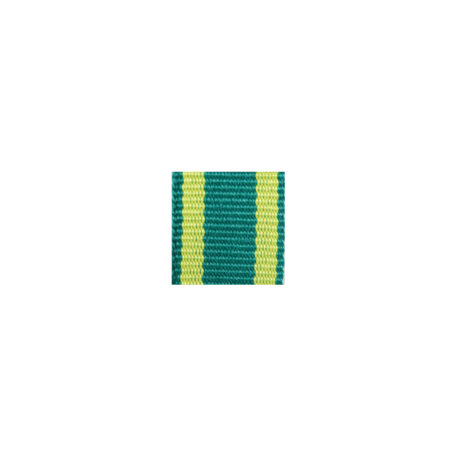 WWII German Württemberg rescue medal ribbon bar's ribbon
