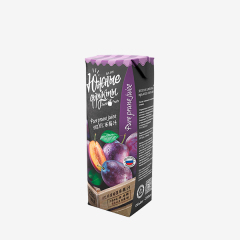 South Fruit 100% Prune Juice NFC from Russia