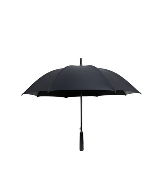 Fashion Polyester Umbrella With Automatic Opening