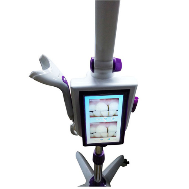 Teeth Whitening LED Lamps Floor Type with Touch Screen