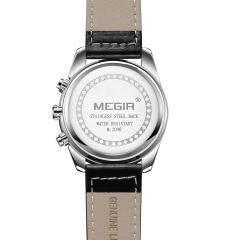 MEGIR 2096