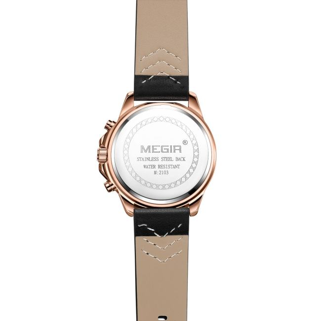 MEGIR 2103