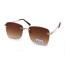AE006XR-sunglasses
