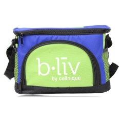 Picnic Lunch Refrigerator Thermal Bag