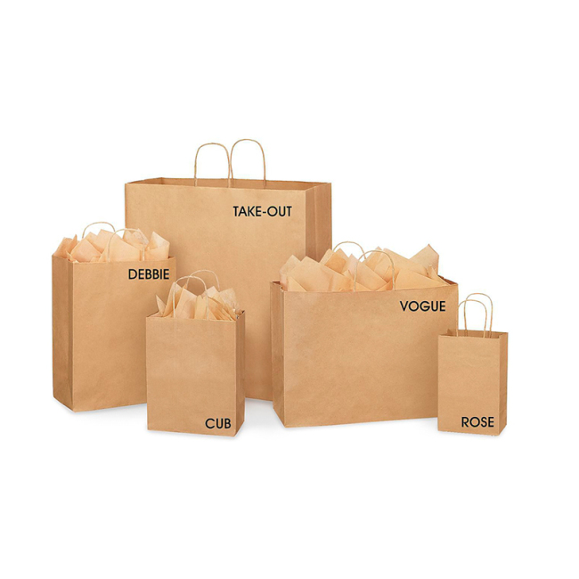 2019 Wholesale Print Customized Bag Branded Recycled Brown Kraft Pattern Fancy Craft Shopping Packaging Bag Paper Bags with Handle