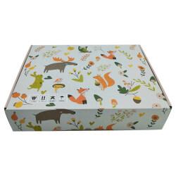 Custom wholesale printed unique corrugated shipping boxes cardboard mailer box custom logo
