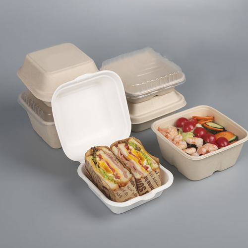 compostable disposable bio degradable packaging takeout container bagasse pulp custom paper fast food box for sushi