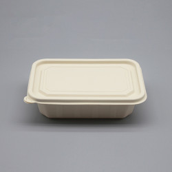 Biodegradable Raw Material Eco-friendly Chinese Take Out Disposable Restaurant Take Away Food Packaging Lunch Box