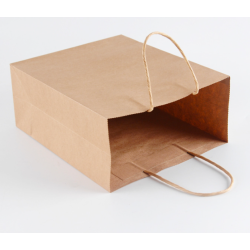 Wholesale Hot Sale Customized Thin Packaging Kraft Paper Bag With Twist Handle