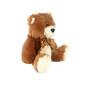 Teddy Bear plush toy for children gift