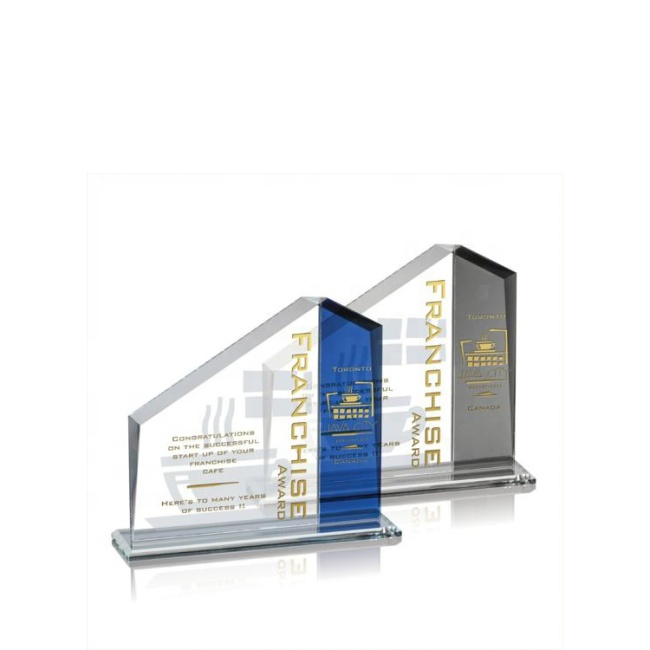 New Style Dissimilarity Achievement Award Optical Glass Trophy Award Plaque Souvenir