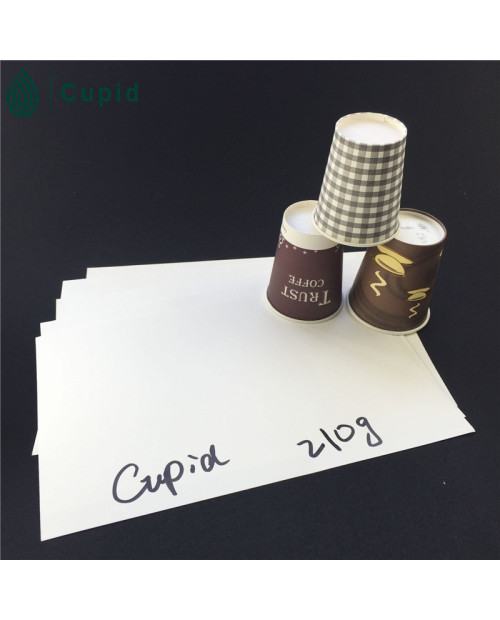 210gsm Pe coated paper for cup, paper sheet