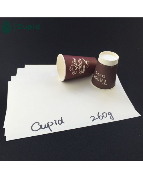 260gsm Hot Drink Disposable Pe Coated Paper In Sheet On Discount